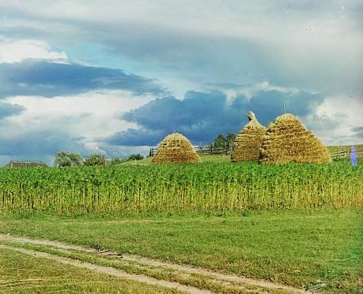 haystacks -- Sergei Mikhailovich Prokudin-Gorskii at the Library of Congress